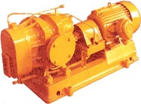 Rotary gas blowers of the E21 series